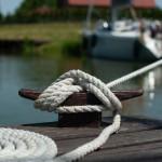 Teknemden Çıkanlar